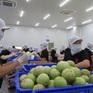"""Để xuất khẩu rau quả đạt 10 tỷ USD: Cần gỡ """"nút thắt"""" công nghệ bảo quản"""