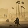Dân số bang California (Mỹ) giảm lần đầu tiên trong lịch sử