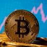Giới chức ngân hàng Anh cảnh báo nhà đầu tư tiền điện tử đối mặt nguy cơ mất trắng