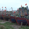 Thái Bình, Nam Định kêu gọi tàu thuyền vào nơi tránh trú bão số 2