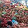 """Không """"ngăn sông, cấm chợ"""" xe chở vải thiều từ Bắc Giang"""