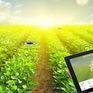"""Chuyển đổi số - """"chìa khóa"""" để nông sản bán được giá cao"""