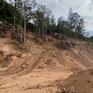 Làm rõ nguyên nhân núi Thị Vải bị hủy hoại