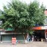 Đắk Lắk áp dụng Chỉ thị 16 tại TP Buôn Ma Thuột và huyện Cư Kuin từ 0h ngày 24/7