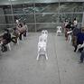 Thủ đô Bangkok của Thái Lan nỗ lực giảm tải bệnh nhân COVID-19