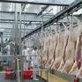 TP Hồ Chí Minh lên nhiều kịch bản cung ứng thịt lợn