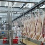 Hà Nội tự chủ được 95% nguồn cung thịt gia cầm, thịt lợn, trứng