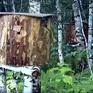 Độc đáo nghề nuôi ong truyền thống tại Nga