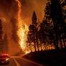 Cháy rừng ở Hy Lạp bước sang ngày thứ 3, địa điểm tổ chức Thế vận hội cổ đại được bảo toàn