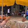 """Nhiều hoạt động hỗ trợ sinh viên """"mắc kẹt"""" tại tâm dịch TP Hồ Chí Minh"""