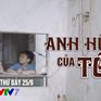 """""""Anh hùng của tôi"""" sắp phát sóng trên VTV7 có gì hấp dẫn?"""