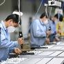 Khôi phục sớm nhất các hoạt động sản xuất kinh doanh đang bị gián đoạn