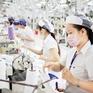 Việt Nam xuất siêu hơn 25 tỷ USD sang thị trường CPTPP