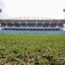 Nhiều sai phạm ở Khu liên hợp thể thao quốc gia Mỹ Đình: Giá cỏ gấp hơn 6 lần so với thực tế