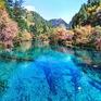 """7 khu rừng ấn tượng """" đẹp hút hồn"""" du khách"""